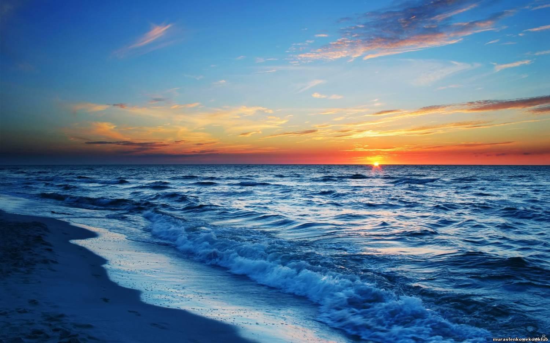 В мире: 8 июня празднуется Всемирный день океанов