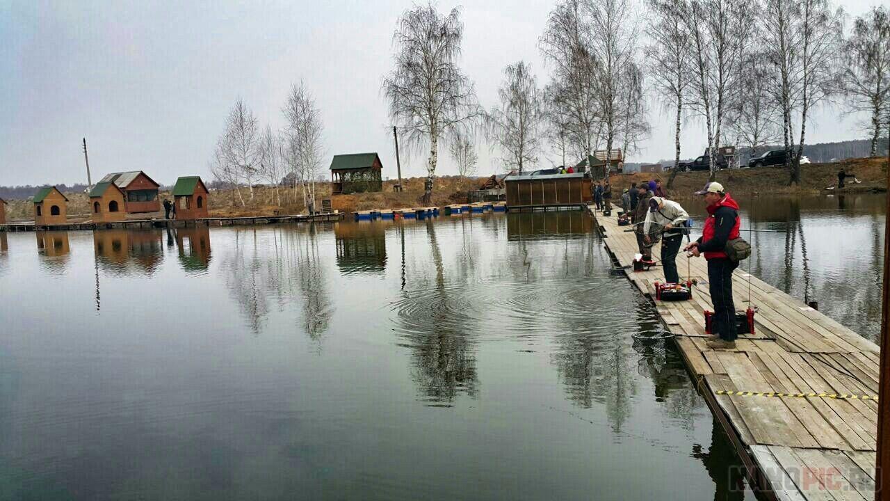 Отчеты о рыбалке в раменском районе