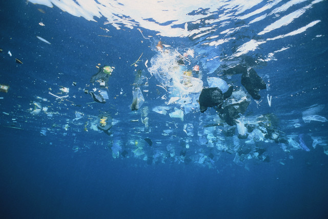 Мировая борьба с пластиком набирает обороты