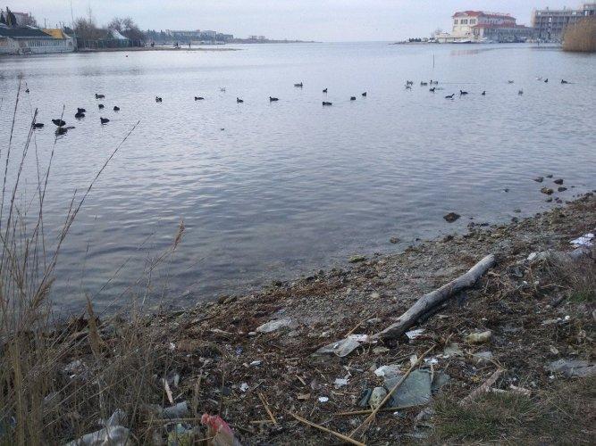 Экология Севастополя | Фото: Форпост