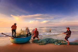Война за рыбу - миф или реальность?