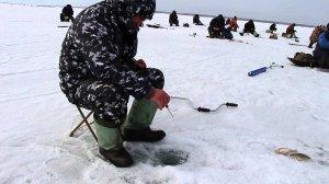Зимняя рыбалка. Лучшее время и наживка для успешной ловли