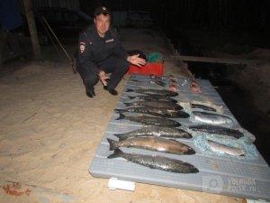 Браконьерство: Арестованы браконьеры с рыбой из Красной книги (ВИДЕО/ФОТО)
