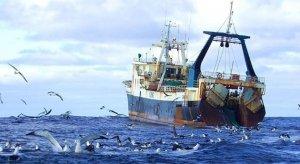Производство: Благодаря субсидированию рыбного хозяйства был увеличен объём производства