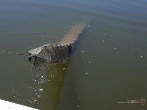 Браконьерство: Полицейские задержали в Волгоградской области 10 рыбаков-браконьеров