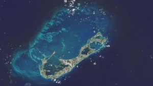 Наука: Неизвестная экосистема в Бермудском море