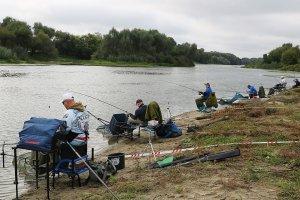 Соревнования: В Брянске пройдут соревнования по рыболовному спорту