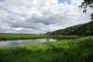Уровень реки в реке Москва