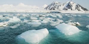 Арктика зеленеет - к добру ли?