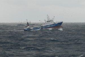 Безопасность: Подробности борьбы с незаконным промышленным рыболовством были представлены прокуратурой