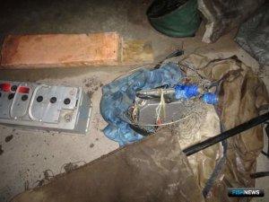 Браконьерство: Электроудочники получили реальные сроки