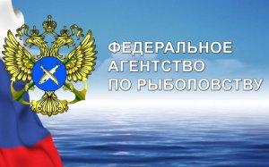 Закон: Новые правила рыболовства в Волжско-Каспийском бассейне (ДОКУМЕНТ)