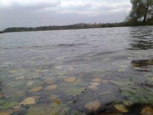 Осенний микроджиг