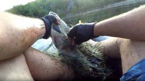 О рыбалке: Рыбак с риском для жизни очищает Волгу от сетей (ВИДЕО)