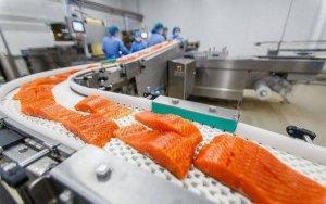 Токсиколог: «Норвежский лосось — самая токсичная еда во всём мире»