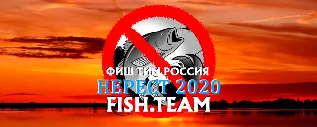 Нерестовый запрет 2021 в Ростовской области