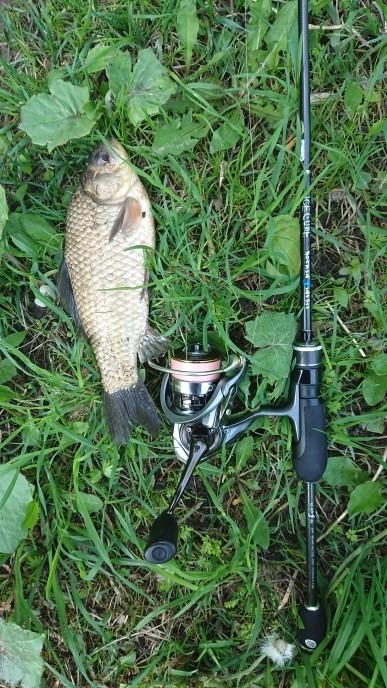 Отчет о рыбалке: В поисках карася на городских прудах - 2