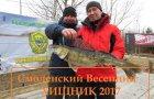 Смоленский весенний хищник 2017