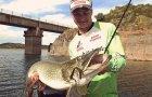Трофейная щука на джиг. Keitech Mad Wag - убойная приманка для ловли трофейной рыбы!