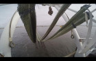 Генуборка морей: нефтяные пятна соберут шваброй - futuris