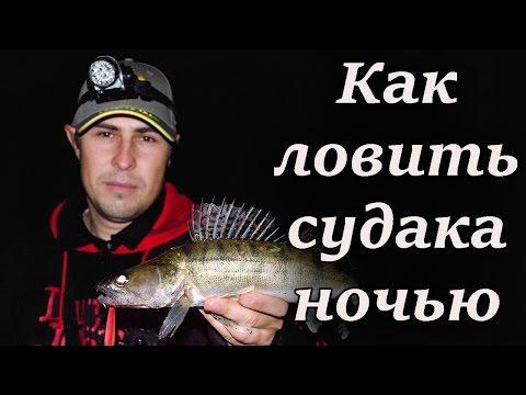 Как ловить судака
